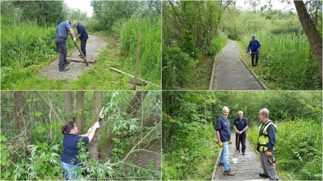 Ongoing boardwalk maintenance and clearing of vegetation from the boardwalk.