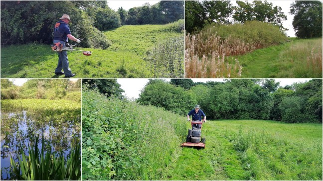 Swardeston Common Mowing