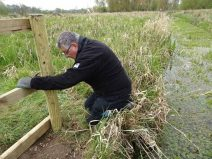 Maintaining the stock fencing and squeeze gates found on the marsh.
