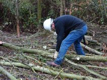 Creating habitat piles of coppiced branches.