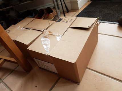 Hedgehogs transported in cardboard boxes,